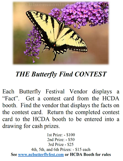 NC Butterfly Festival